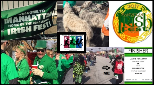 Irish Fest 2017 collage